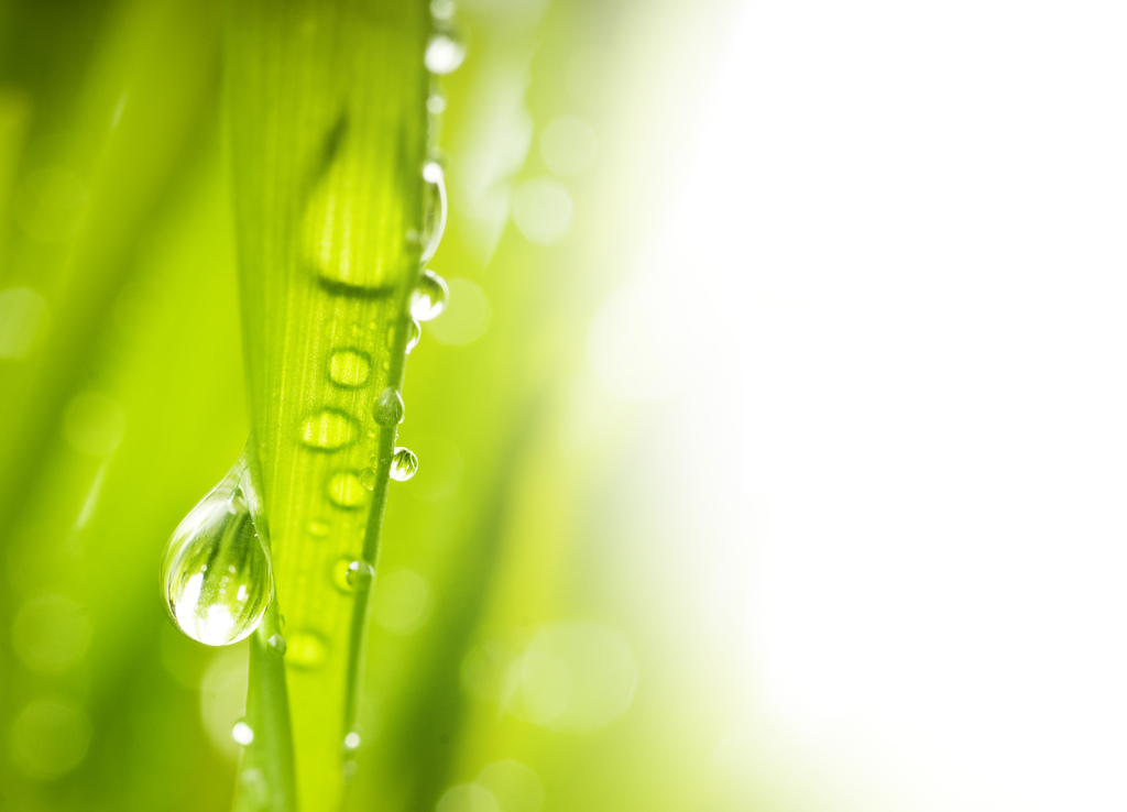 水元素水花清水动感背景液体背景水滴图片素材 模板下载 1.38MB 其他大全 生活工作