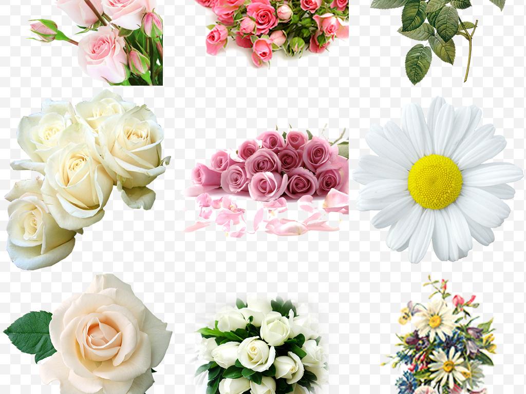 手绘玫瑰鲜花花束康乃馨百合手捧花png图片素材 模板下载 32.84MB 花卉大全 自然