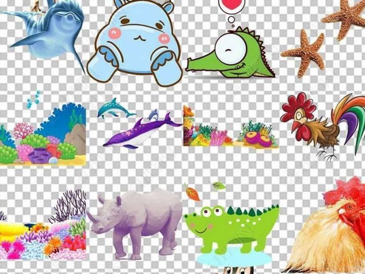 100款各种动物图片素材