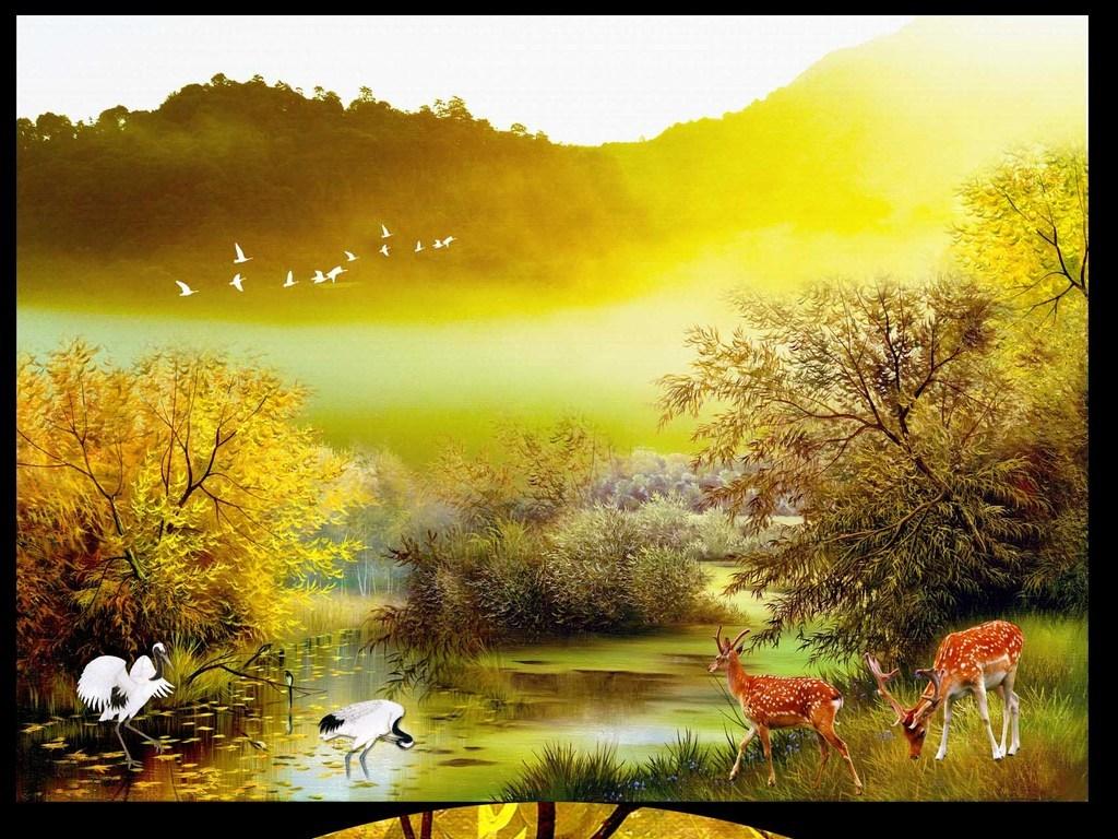 森林麋鹿唯美图片
