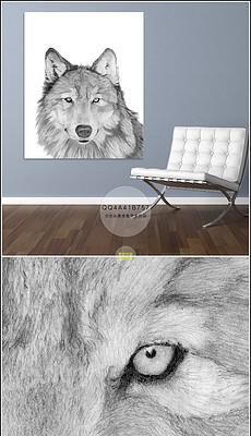 动物风景图片素材 动物风景图片素材下载 动物风景背景素材 动物风景