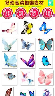 蝴蝶兰设计素材 蝴蝶兰设计素材下载 蝴蝶兰设计素材模板 我图网