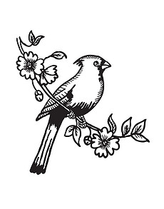 小鸟简笔画图片素材 小鸟简笔画图片素材下载 小鸟简笔画背景素材 小