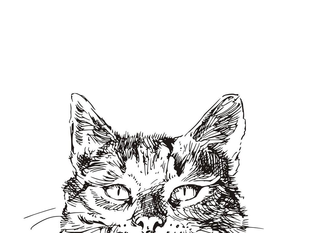 手绘线描猫咪头像