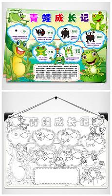 WORD/PS青蛙成长记小报动物生长手抄报青蛙生长过程小报观察日记