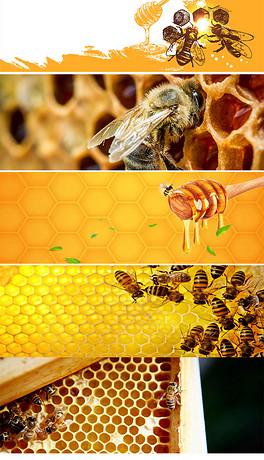 JPG卡通蜜蜂 JPG格式卡通蜜蜂素材图片 JPG卡通蜜蜂设计模板 我图网