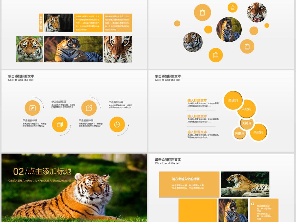 野生保护动物凶猛老虎ppt动态模板下载 22.30MB 其他大全 其他PPT