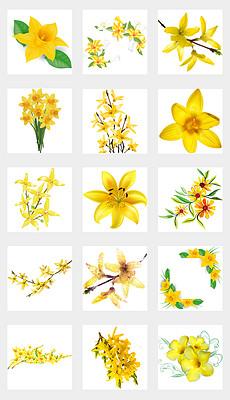 PPT黄色迎春花 PPT格式黄色迎春花素材图片 PPT黄色迎春花设计模板 我图网