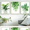 小清新水彩植物现代简约北欧装饰画