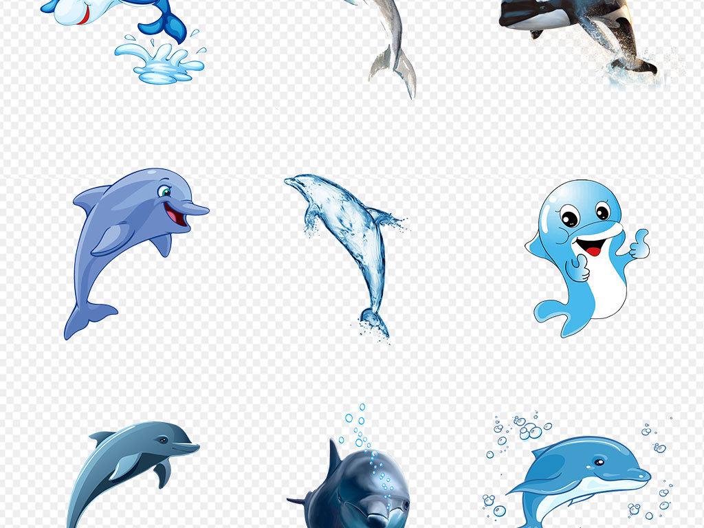 手绘海豚海豚动物