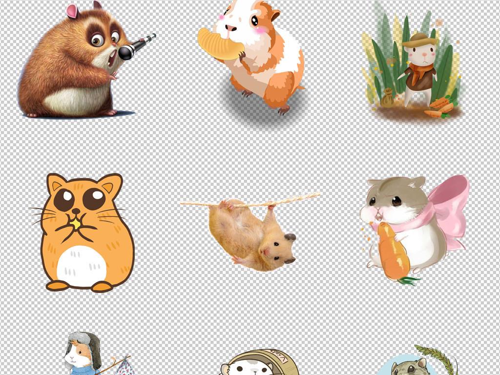 市场店蜥蜴海报设计素材宠物促销png仓鼠二桥汉口花鸟动物背景图片