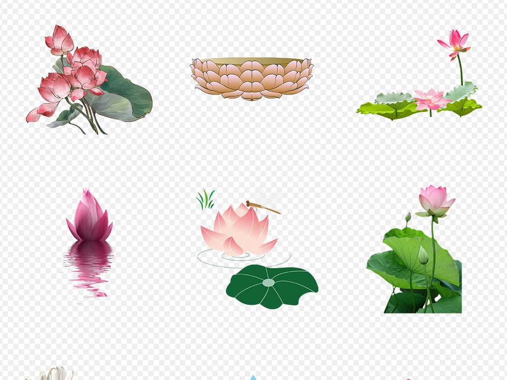 免抠元素 自然素材 花卉 > 国画墨荷花手绘水荷叶海报背景png素材  素
