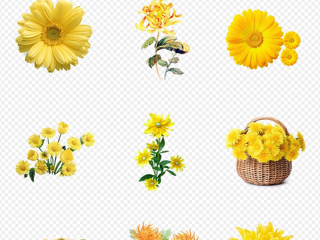 花卉背景水彩手绘植物背景鲜花背景鲜花图片鲜花素材蓝色花红色花粉色