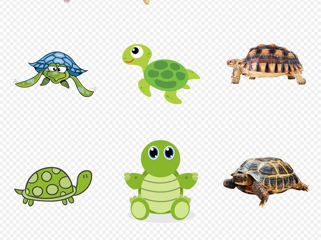 可爱卡通乌龟海洋动物海龟海报片png素材