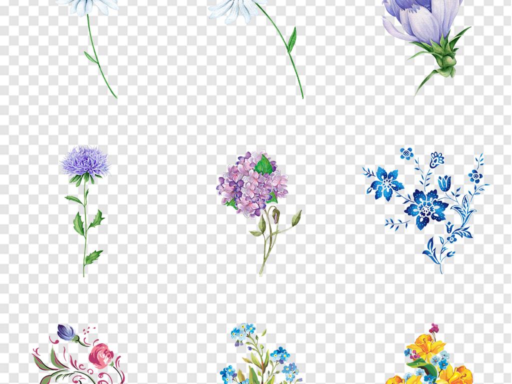 植物清新                                          手绘水彩