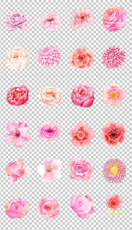 TIF分层ps花朵