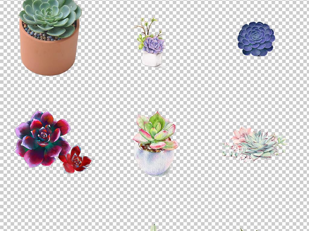 可爱手绘水彩多肉植物盆栽海报素材背景png