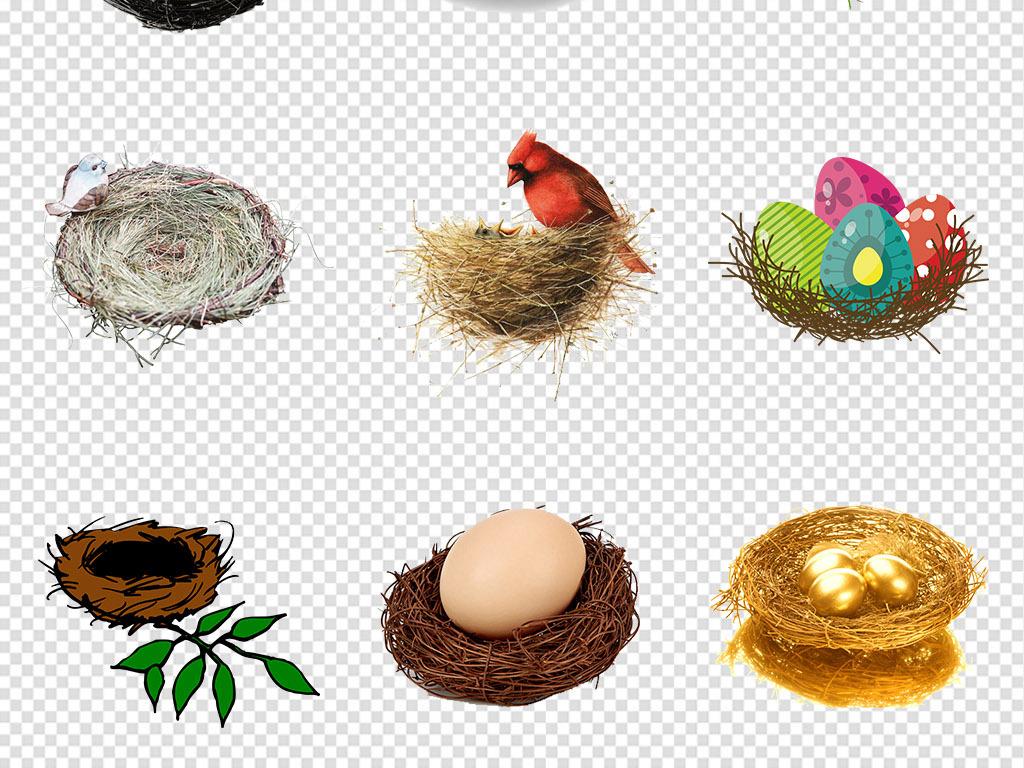 动物                                          鸟手绘鸟巢