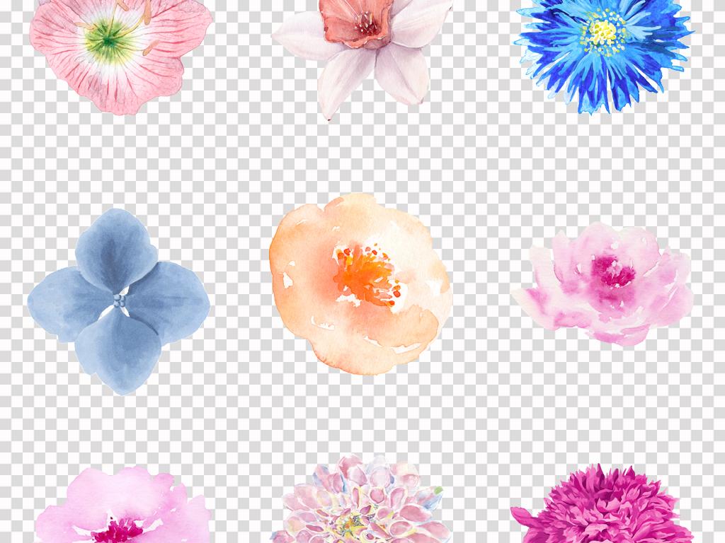 唯美手绘水彩小清新花卉花朵植物背景png素材