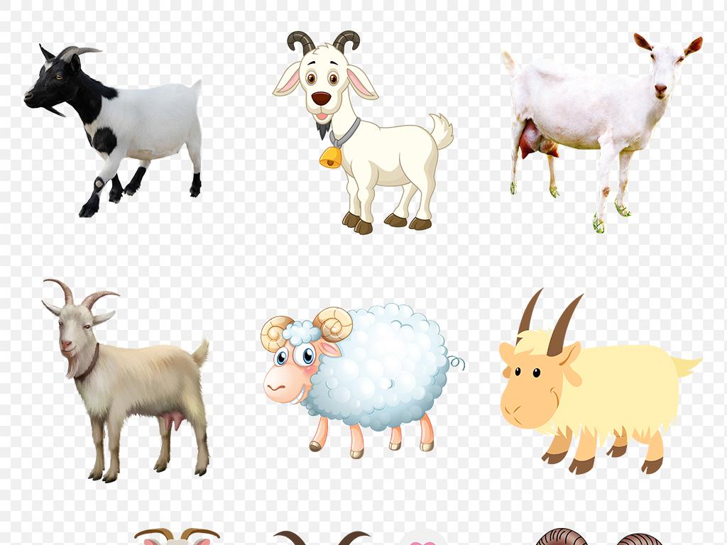 卡通可爱小羊绵羊山羊海报素材背景图片png图片