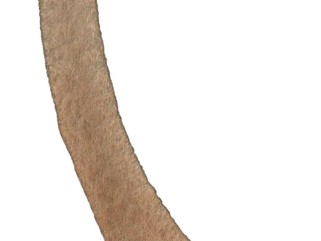 免扣小清新简约水彩花卉北欧可爱动物水彩素材叶子线条高级灰水彩