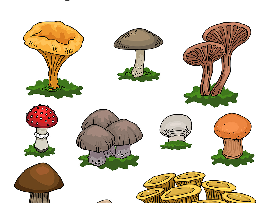 背景蘑菇房蘑菇乐园蘑菇小房子梦幻蘑菇屋蘑菇屋手绘