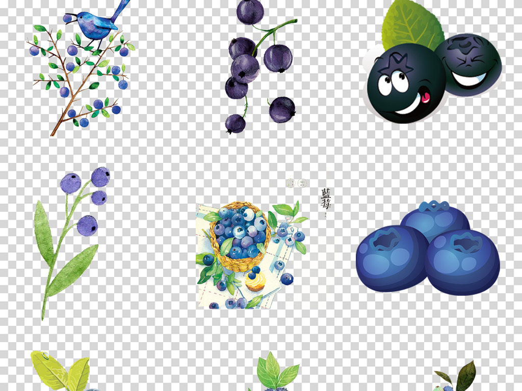 卡通水彩手绘蓝莓水果海报背景png免扣素材