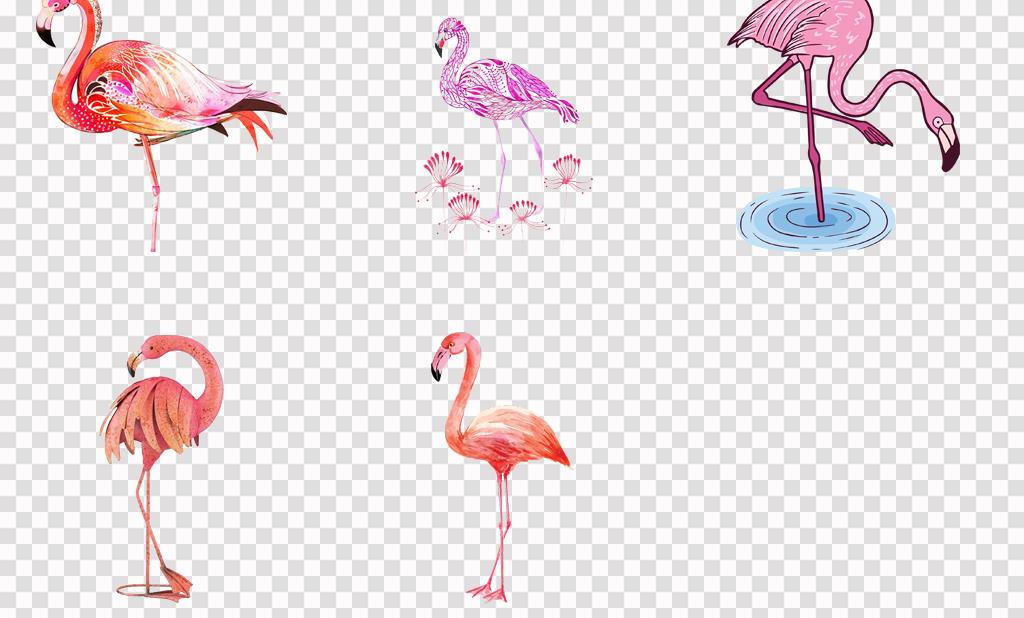 50款手绘可爱卡通火烈鸟海报背景png素材