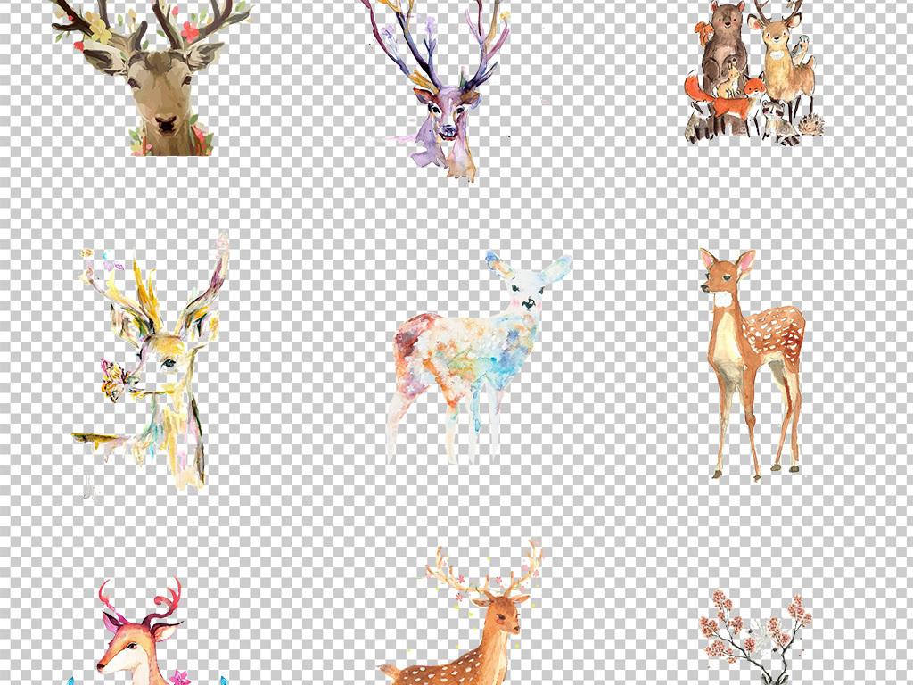 手绘水彩鹿头麋鹿小鹿创意艺术海报素材背景png