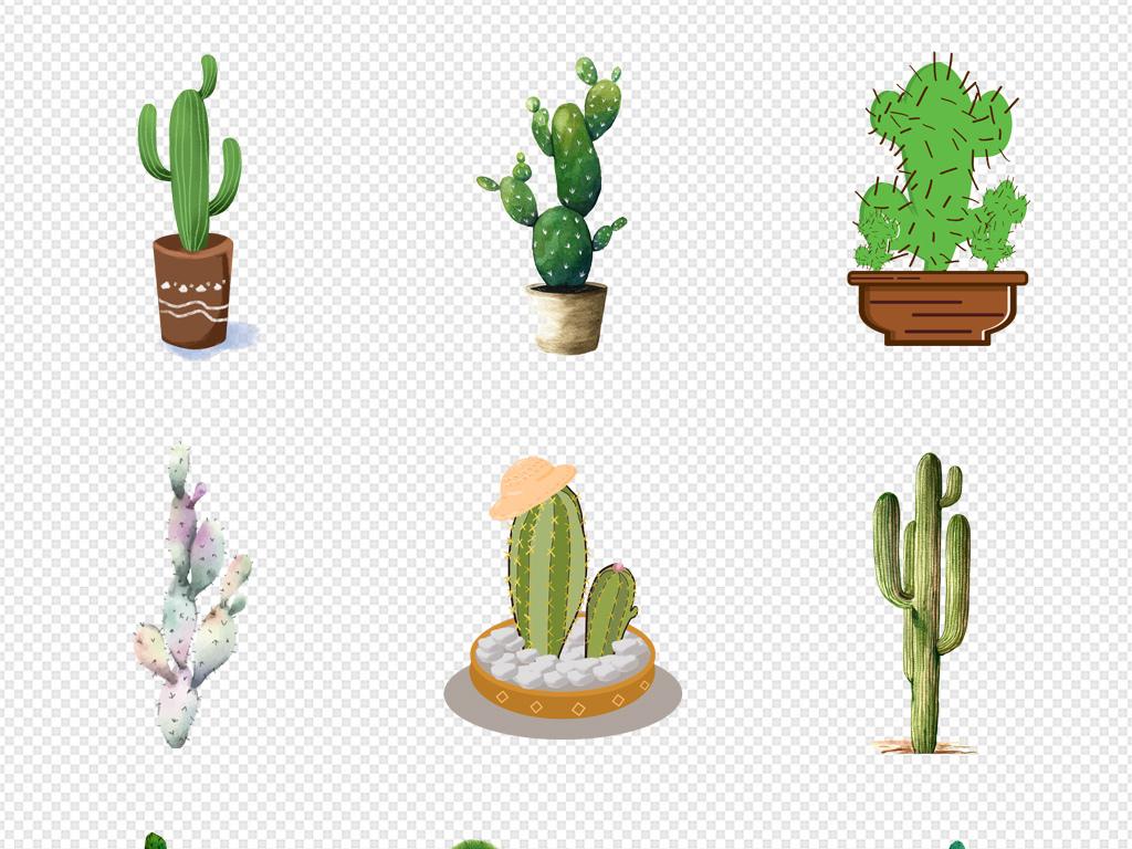 黑白植物手绘植物画框