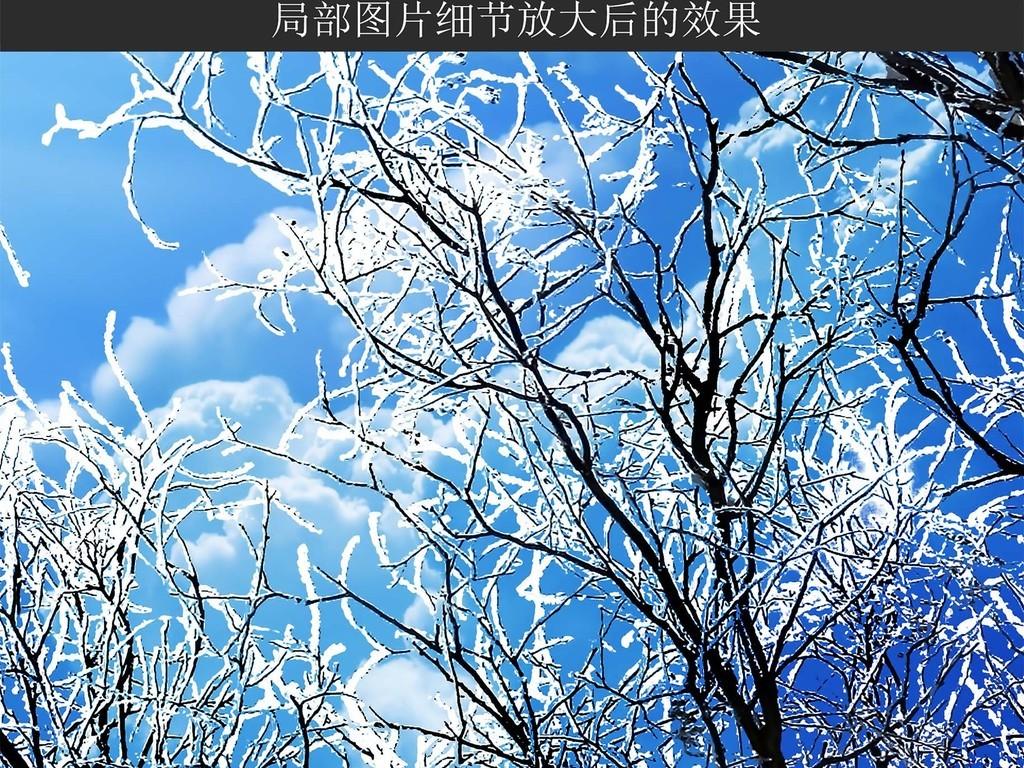 超清冬天森林天空蓝天雪景风景画吊顶天顶画