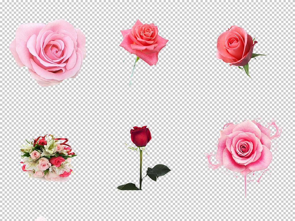 玫瑰花手绘月季玫瑰花水墨花卉png素材