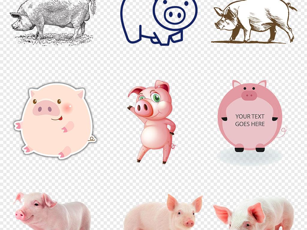 50款手绘卡通动物可爱小猪粉红猪猪头png素材
