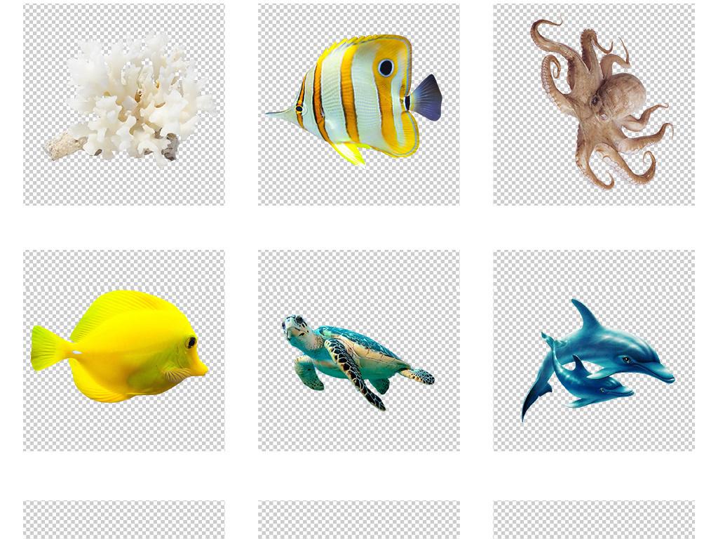 可爱卡通手绘鱼珊瑚海洋生物png素材