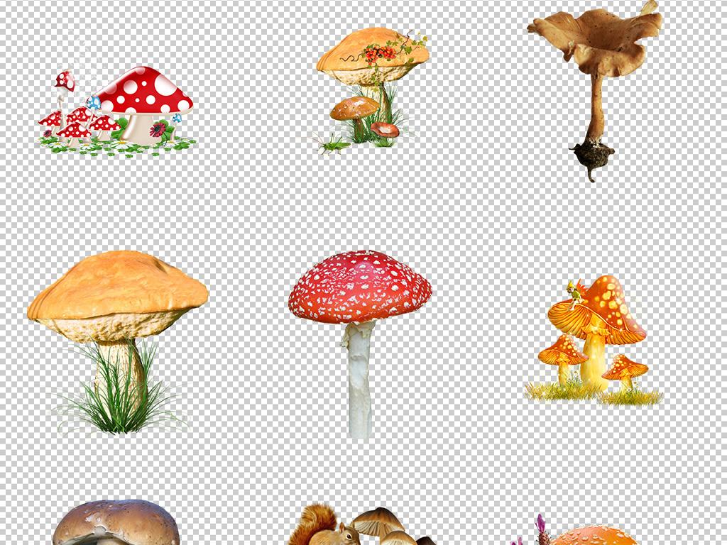 可愛卡通手繪蘑菇童話故事透明背景免摳圖png圖片素材