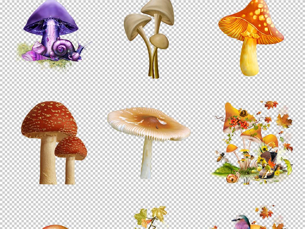 可爱卡通手绘蘑菇童话故事透明背景免抠图png1