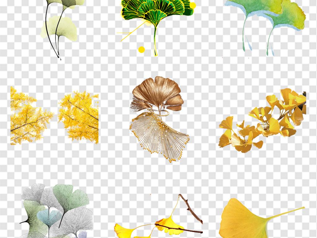 秋天黄色树叶银杏叶海报背景png免扣素材