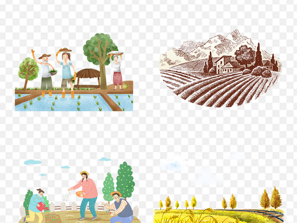 卡通手绘农田稻谷小麦背景png