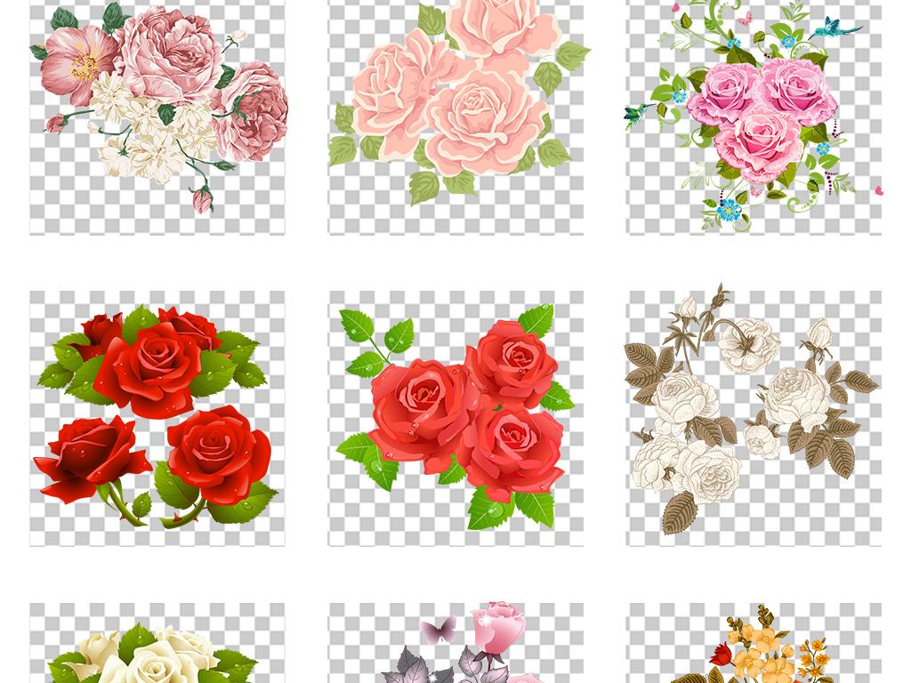 手绘月季玫瑰月季花玫瑰花png
