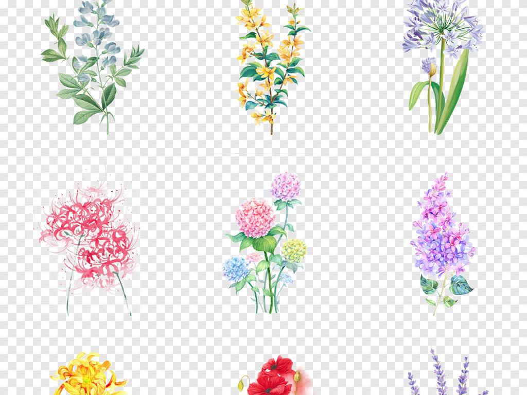 花纹边框小清新素材小清新边框花草树叶手绘小清新森系热带树叶叶子