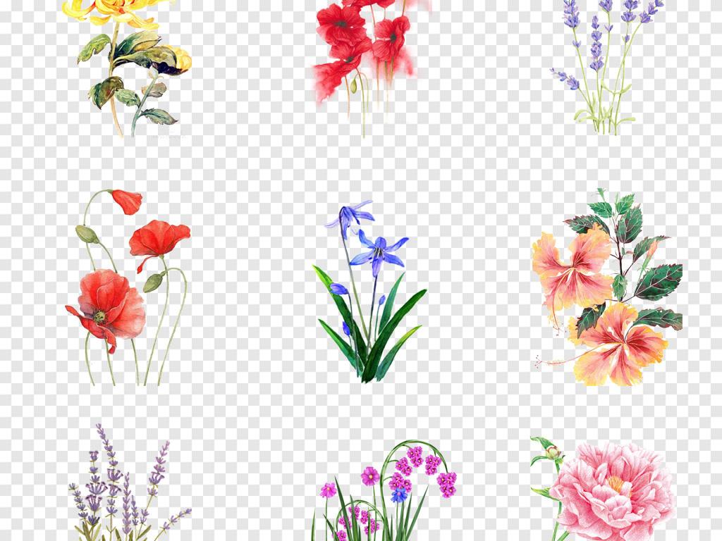 卡通水彩手绘小清新花卉花朵植物png免抠素材