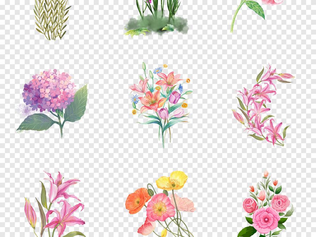 桂花植物花卉水彩素材花朵手绘花卉手绘卡通手绘花朵卡通素材水彩花卉