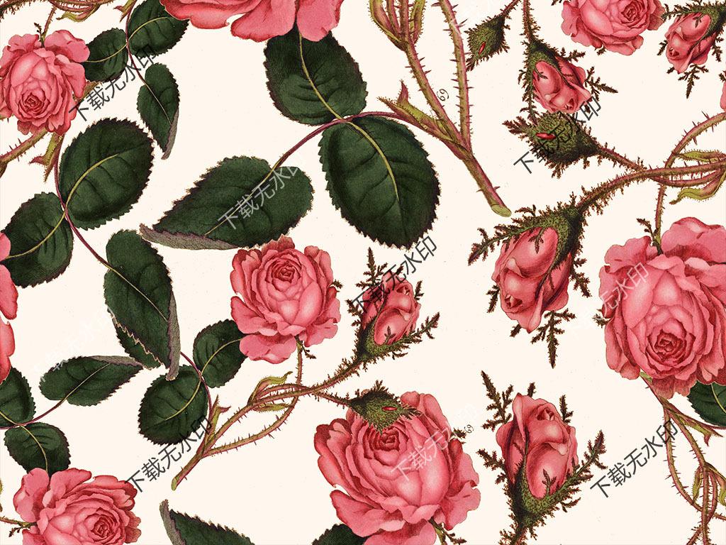 时尚手绘玫瑰花数码印花服装面料花型图案