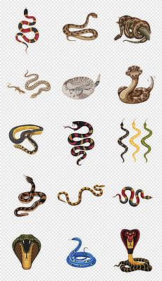 卡通手绘爬行动物可爱毒蛇眼镜蛇png素材