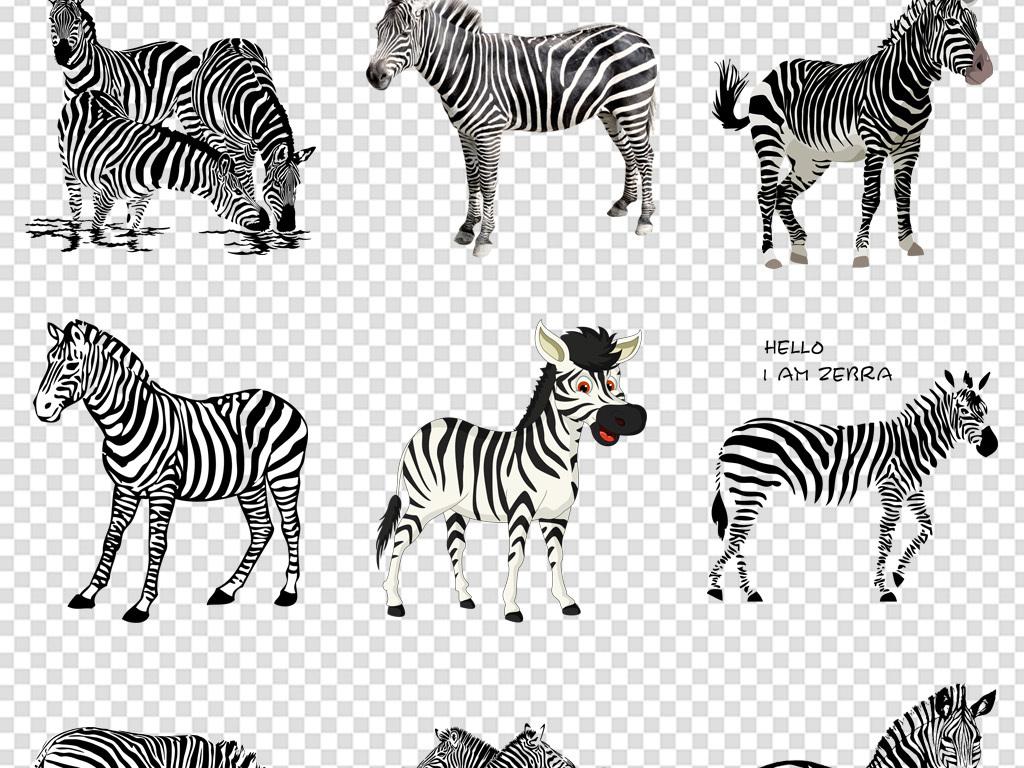 斑马动物海报背景免扣png