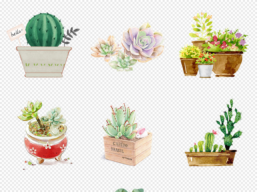 原创手绘水彩多肉植物仙人掌芦荟花盆景卡片装饰插画png免扣设计素材
