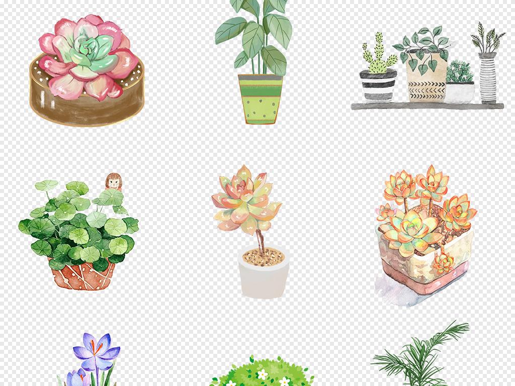 手绘水彩多肉植物仙人掌芦荟花盆景卡片装饰插画png免