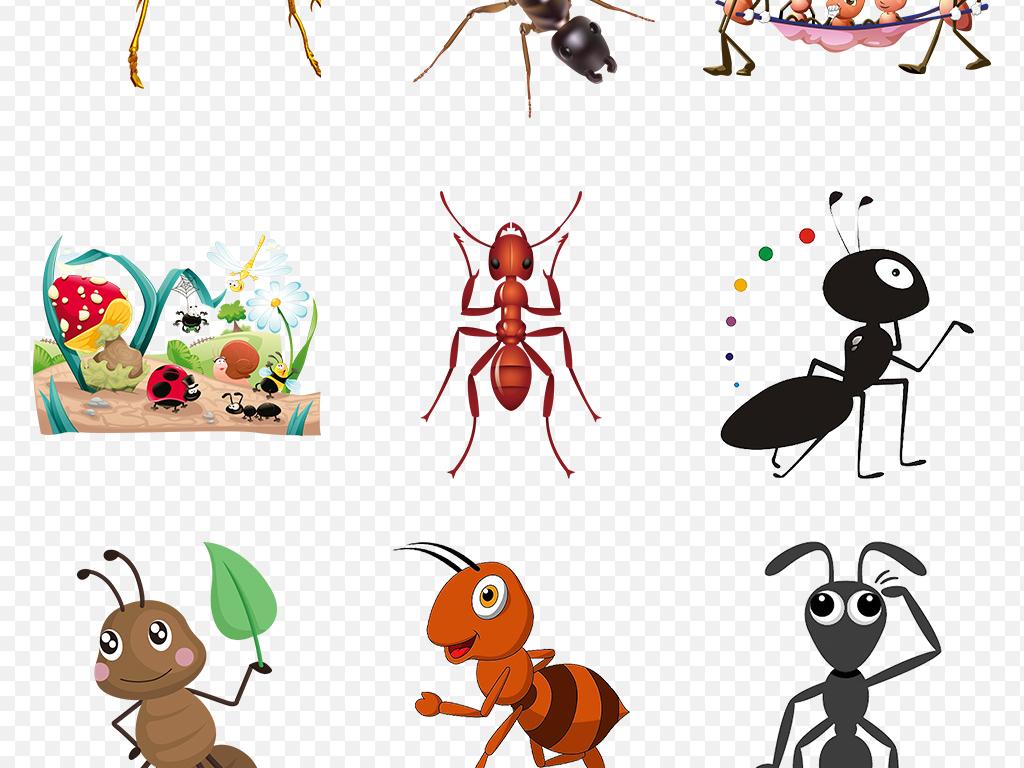 卡通手绘蚂蚁动物幼儿园海报素材背景图片png