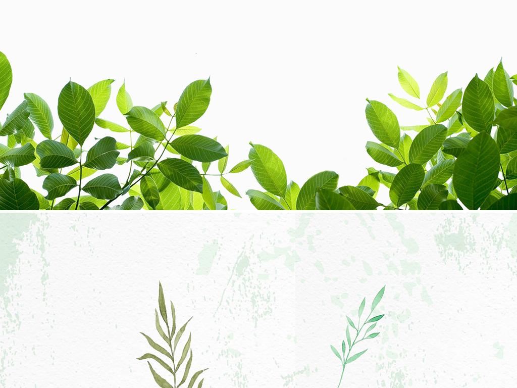 清新绿色叶子植物ppt背景图片