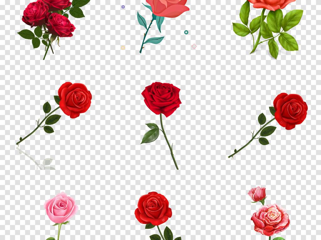 卡通单支玫瑰花手绘月季玫瑰花水墨花卉png素材